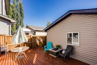 Photo 19: 64 Copperstone Gardens SE in Calgary: Copperfield Detached for sale : MLS®# A1145185