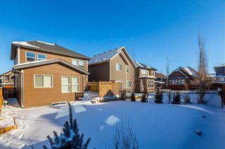 Photo 42: 169 CRANARCH CM SE in Calgary: Cranston House for sale : MLS®# C4226872