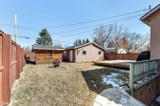 Photo 31: 7940 34 Avenue NW in Calgary: Bowness Detached for sale : MLS®# A1084792