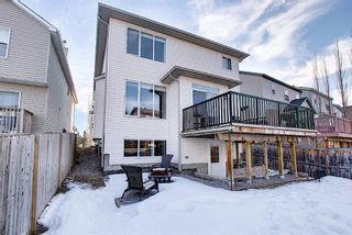 Photo 50: 900 Copperfield Boulevard SE in Calgary: Copperfield Detached for sale : MLS®# A1079249