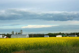 Photo 4: 27232 TWP RD 511: Rural Parkland County House for sale : MLS®# E4254971