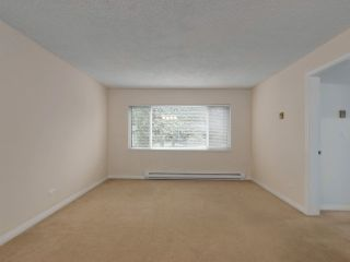 Photo 12: 1259 PLATEAU DRIVE in North Vancouver: Pemberton Heights Condo for sale : MLS®# R2495881