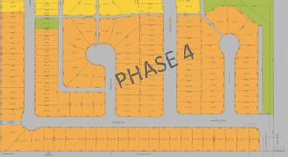Main Photo: 0 Havenfield Drive: Carstairs Residential Land for sale : MLS®# A1110471
