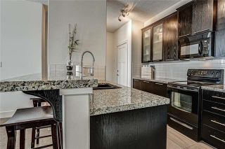 Photo 10: 315 3410 20 Street SW in Calgary: South Calgary Apartment for sale : MLS®# A1052619