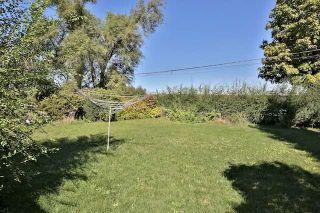 Photo 9: 126 Baycrest Ave in Toronto: Englemount-Lawrence Freehold for sale (Toronto C04)  : MLS®# C3610679