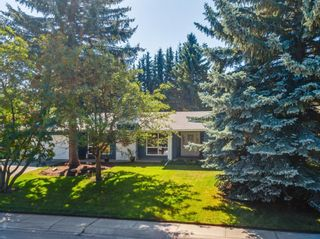 Photo 41: 439 WILDERNESS Drive SE in Calgary: Willow Park Detached for sale : MLS®# A1026738
