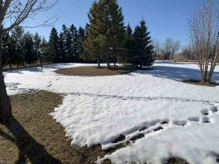 Photo 48: 57113 Range Road 83: Rural Lac Ste. Anne County House for sale : MLS®# E4233213