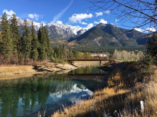 Photo 2: Lot 98 RIVERSIDE DRIVE in Fairmont Hot Springs: Vacant Land for sale : MLS®# 2460024