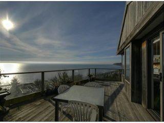 Photo 4: 15054 ROYAL Avenue: White Rock House for sale (South Surrey White Rock)  : MLS®# F1401844