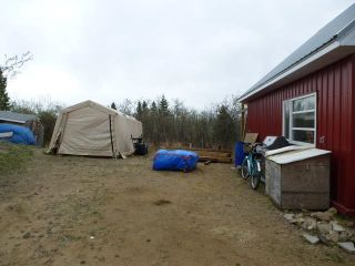 Photo 18: 57023 RGE RD 220: Rural Sturgeon County House for sale : MLS®# E4243864