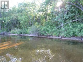 Photo 6: 211 MADILL Road in Katrine: Vacant Land for sale : MLS®# 40131216