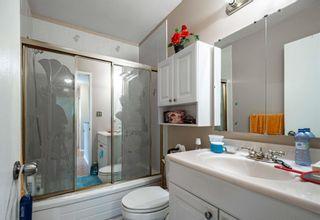 Photo 11: 11920 139 Avenue in Edmonton: Zone 27 House for sale : MLS®# E4254778