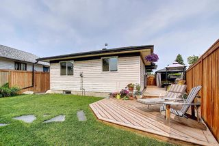 Photo 21: 110 Abalone Crescent NE in Calgary: Abbeydale Detached for sale : MLS®# A1127524