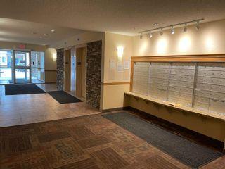 Photo 16: 107 2045 GRANTHAM Court NW in Edmonton: Zone 58 Condo for sale : MLS®# E4266235
