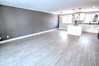 Photo 10: 547 Templeby Place NE in Calgary: Temple Detached for sale : MLS®# A1071164