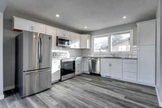 Main Photo: 107 Whitewood Place NE in Calgary: Whitehorn Semi Detached for sale : MLS®# A1073367