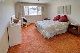 Photo 15: 3016 Henderson Rd in VICTORIA: OB Henderson House for sale (Oak Bay)  : MLS®# 840987