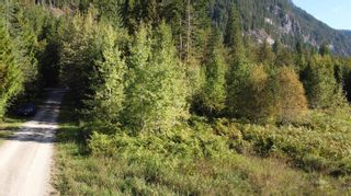 Photo 4: 2504 Cambie - Solsqua Road, in Sicamous: Vacant Land for sale : MLS®# 10241319