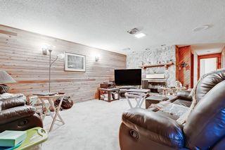 Photo 25: 13108 LAKE CRIMSON Drive SE in Calgary: Lake Bonavista Detached for sale : MLS®# A1093648