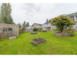 "Photo 20: 13170 99 Avenue in Surrey: Cedar Hills House for sale in ""Cedar Hills"" (North Surrey)  : MLS®# R2010167"