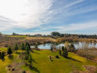 "Photo 14: 19110 42A Avenue in Surrey: Serpentine House for sale in ""LAKESIDE ESTATES"" (Cloverdale)  : MLS®# R2489756"
