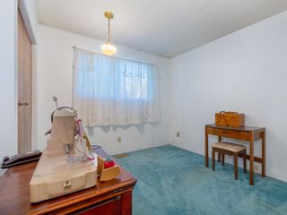 Photo 14: 239 Pinemill Road NE in Calgary: Pineridge Detached for sale : MLS®# A1021035