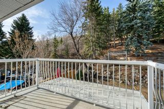 Photo 19: 8131 33 Avenue NW in Calgary: Bowness Detached for sale : MLS®# A1092257