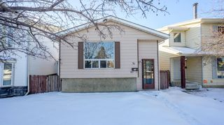 Main Photo: 31 Erin Croft Crescent SE in Calgary: Erin Woods Detached for sale : MLS®# A1072155