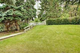 Photo 45: 635 Tavender Road NW in Calgary: Thorncliffe Detached for sale : MLS®# A1117186