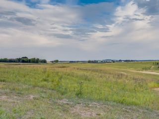 Photo 14: 14ac NORTH of DUNBOW Rd 48 Street: Rural Foothills County Residential Land for sale : MLS®# A1092764