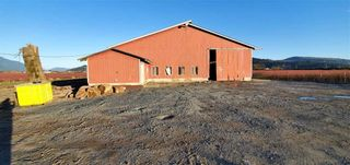 Photo 4: 5746 BELL Road in Abbotsford: Matsqui Agri-Business for sale : MLS®# C8029656