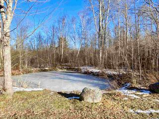 Photo 28: 1476 Alma Road in Loch Broom: 108-Rural Pictou County Residential for sale (Northern Region)  : MLS®# 202101111