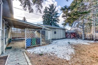 Photo 31: 345 Whitney Crescent SE in Calgary: Willow Park Detached for sale : MLS®# A1061580