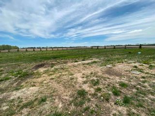 Photo 23: 61515 RR 261: Rural Westlock County House for sale : MLS®# E4246695