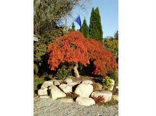 Photo 10: 24533 DEWDNEY TRUNK Road in Maple Ridge: Websters Corners House for sale : MLS®# V1033097