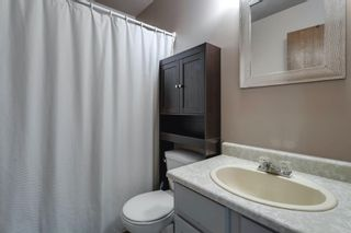 Photo 19: 29 Abberfield Crescent NE in Calgary: Abbeydale Semi Detached for sale : MLS®# A1091796