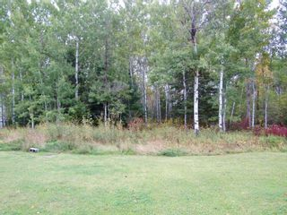 Photo 6: 4728 HWY 71 in Emo: House for sale : MLS®# TB211966