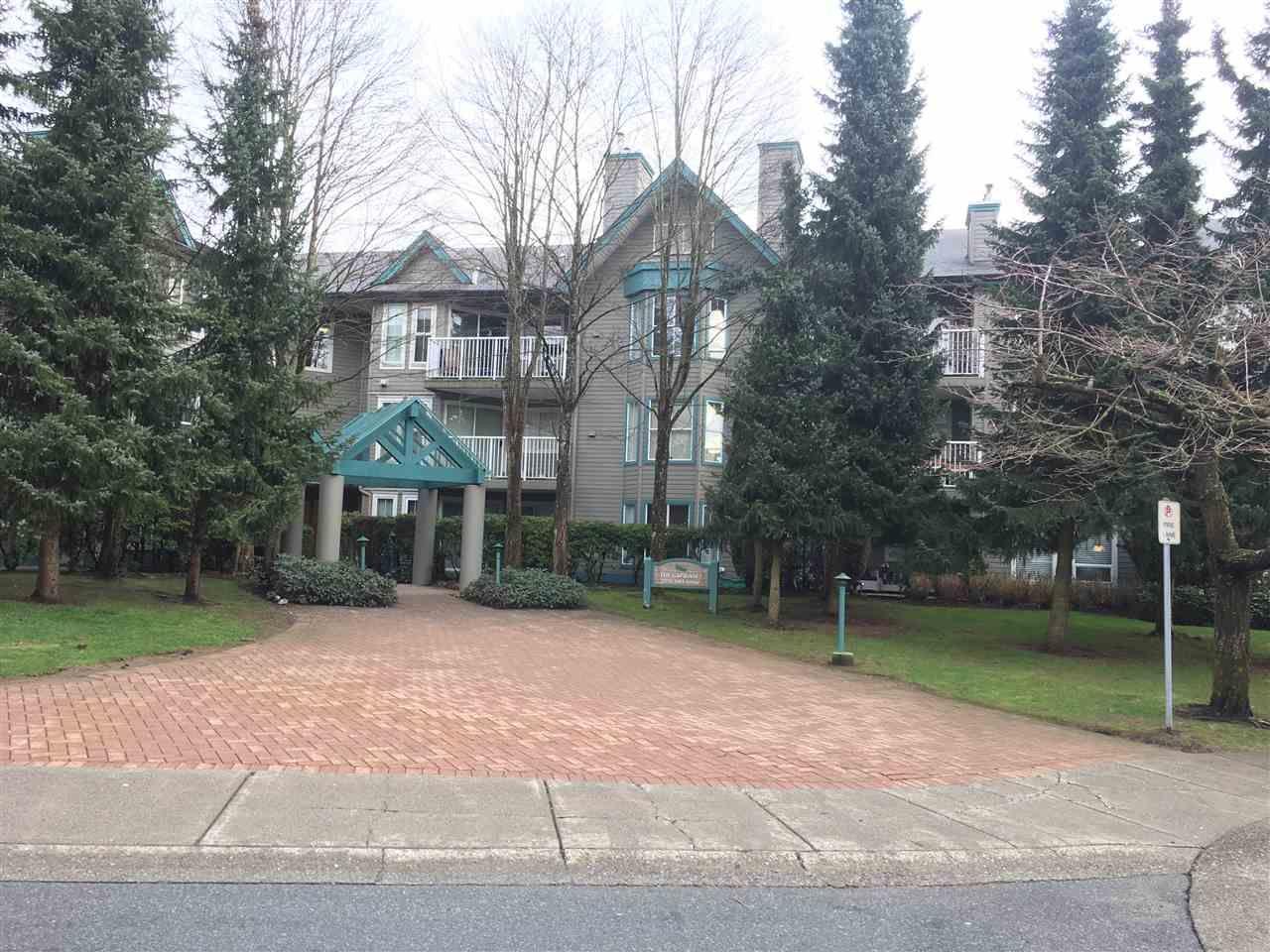 Photo 2: Photos: 106 15150 108TH AVENUE in Surrey: Bolivar Heights Condo for sale (North Surrey)  : MLS®# R2148396