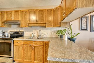 Photo 11: 124 Deer Ridge Close SE in Calgary: Deer Ridge Semi Detached for sale : MLS®# A1129488