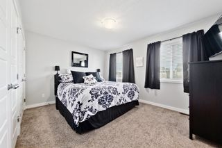 Photo 15: 206 Ravensmoor Link SE: Airdrie Detached for sale : MLS®# A1058876