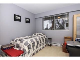 """Photo 16: 207 5419 201A Street in Langley: Langley City Condo for sale in """"Vista Gardens"""" : MLS®# F1401974"""