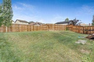 Photo 30: 129 Silverado Plains Close SW in Calgary: Silverado Detached for sale : MLS®# A1139715