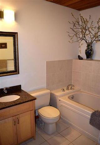 Photo 11: 67132 WILLOWDALE Road in Springfield Rm: Birds Hill Park Residential for sale (R04)  : MLS®# 1913112