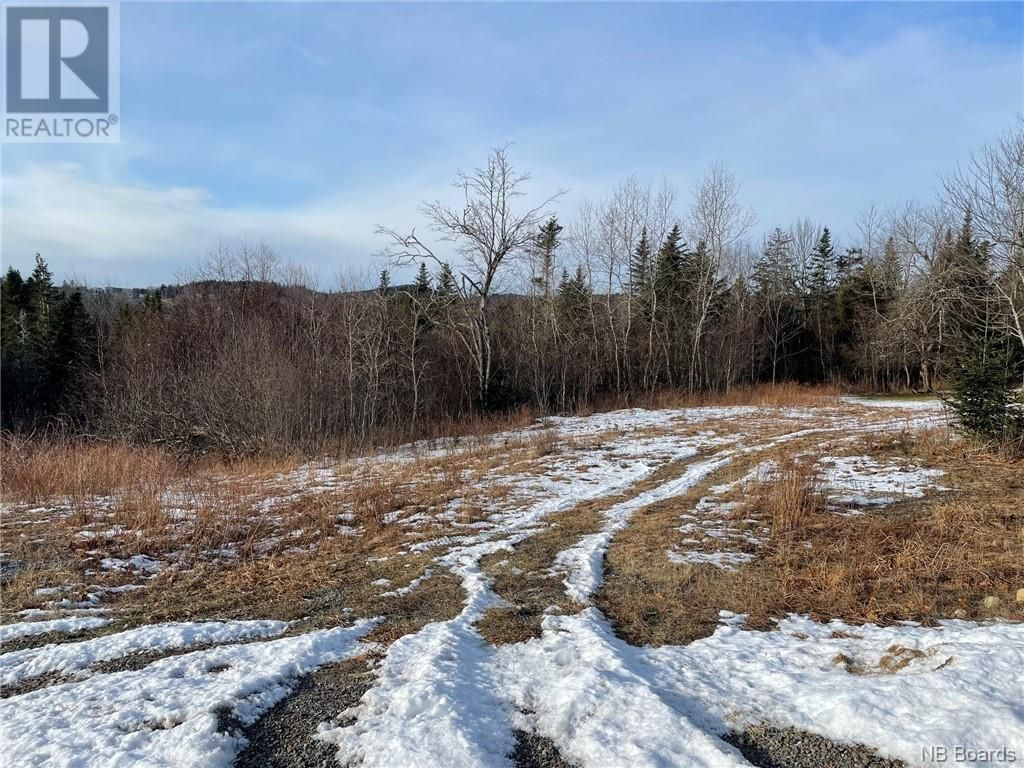 Main Photo: - Harbour Heights Street in St. George: Vacant Land for sale : MLS®# NB053031