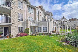 """Photo 14: 329 19750 64 Avenue in Langley: Willoughby Heights Condo for sale in """"Davenport"""" : MLS®# R2352435"""