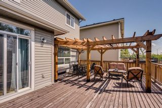 Photo 45: 462 WILLIAMSTOWN Green NW: Airdrie Detached for sale : MLS®# C4264468