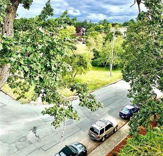 Photo 10: 305 3277 Glasgow Ave in : SE Quadra Condo for sale (Saanich East)  : MLS®# 882433
