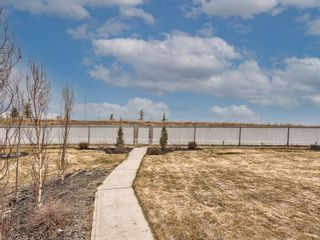 Photo 44: 69 Thornfield Close SE: Airdrie Detached for sale : MLS®# A1093545