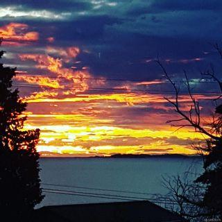Photo 4: 5151 Fillinger Cres in : Na North Nanaimo House for sale (Nanaimo)  : MLS®# 876379