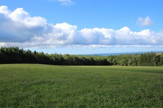 Photo 12: Lot Old Port Hood-Mabou Road in Port Hood: 306-Inverness County / Inverness & Area Vacant Land for sale (Highland Region)  : MLS®# 202017613